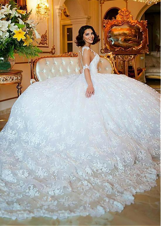 Big Ball Gown Wedding Dresses See Through Back Lace Dress Long Train Half Sleeves V Neck Bridal Gowns